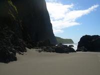 Hawaiian Beach Scene 2