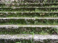 Texture 4 steps