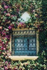 flowered window