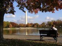Washington D. C