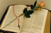 Biblia e rosa 1