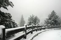 Snowie 2