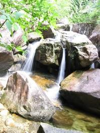 Waterfall, Shannon Falls Hikin