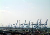 Cargo Shipping Cranes 4