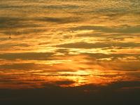 Orange blue(sky)