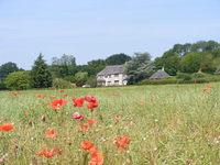 Poppyfield Cottage