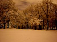 Winter in Brno