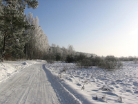 winter_road_ 4