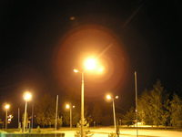 Nightwalk 7