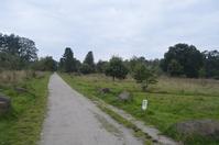 Parkland Path 2