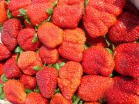 strawberrys 1