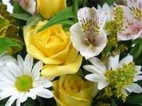 Flower Bouquet (close up)