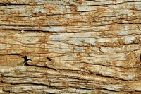 Weathered Wood 13