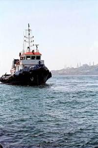 AR Marin 6