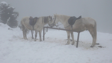 Greece winter 1
