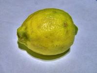 HDR: Lemon