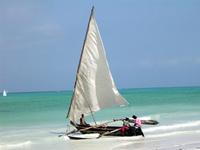 Zanzibar 4