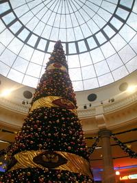 Christmastree in Oberhausen