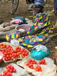 Roadside Produce