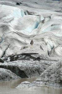 Iceland - Glacier Lakes 10