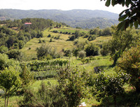 Istrian Landscape