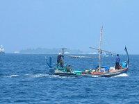 thoni in maldives
