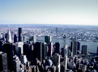 new york shots 12