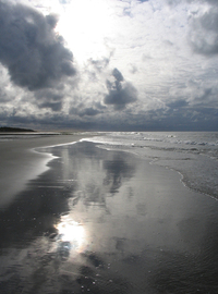beach at ameland