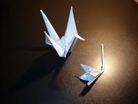 suet's origami