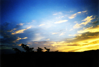 Sky in the eve 1