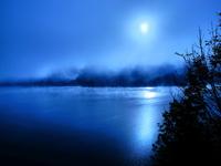 Autum Fog