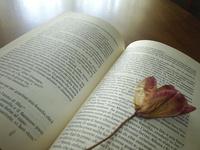 Book & flower