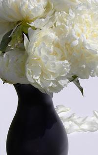 Garden Flowers in Nate Berkus