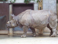 The Toronto Zoo 2