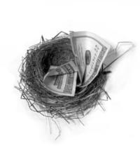 Nest Egg Security