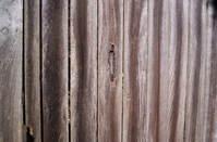 woodfence
