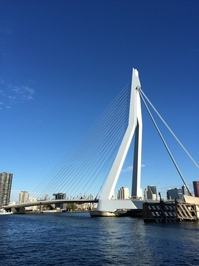 Erasmusbrug (Erasmus Bridge) Rotterdam