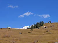 landschape Moeciu