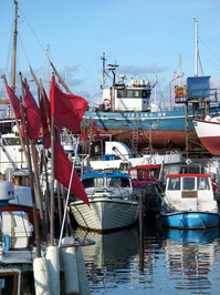 Gilleleje Harbour 5