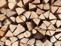 madera en pila 2