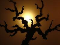 Decoration of Lightning tree