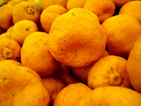 Vegi Goodness - Citrus