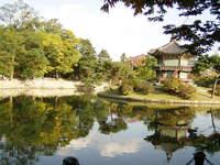kyungbokgong palace garden 3