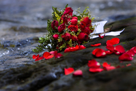 Roses Bouquet dropped into the water