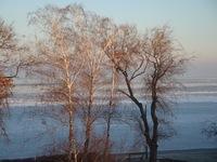 winter at Balaton lake
