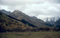 Kavkaz 35