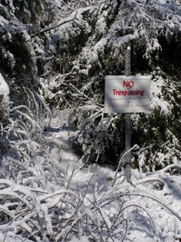 Winter No Trespassing 1