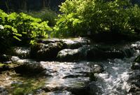 Plitvica Lakes in Croatia 9