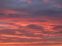 alberta sunset 1