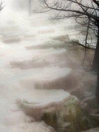 Lily Pad Stones